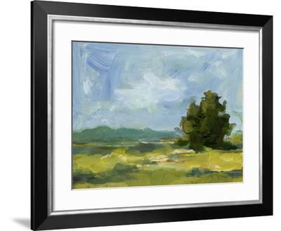Field Color Study II-Ethan Harper-Framed Art Print
