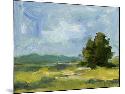 Field Color Study II-Ethan Harper-Mounted Art Print