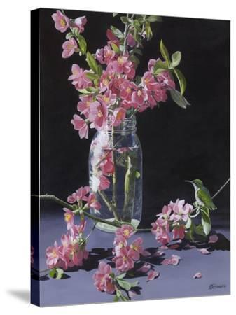 Quince and Ruby II-Fred Szatkowski-Stretched Canvas Print