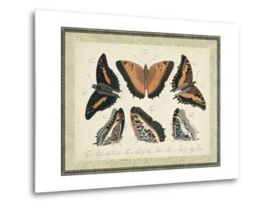 Bookplate Butterflies Trio I--Metal Print
