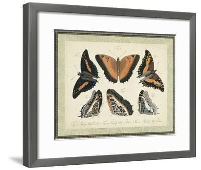 Bookplate Butterflies Trio I--Framed Art Print