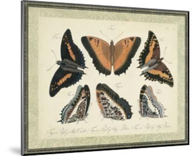 Bookplate Butterflies Trio I--Mounted Art Print