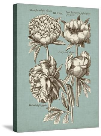 Chambray Chintz II--Stretched Canvas Print