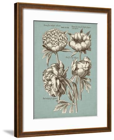 Chambray Chintz II--Framed Art Print