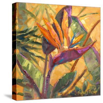 Splash of the Tropics I-Nanette Oleson-Stretched Canvas Print