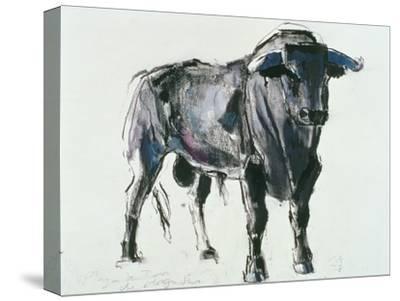 Plaza De Toros De Miajadas, 1998-Mark Adlington-Stretched Canvas Print