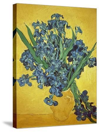 Iris-Vincent van Gogh-Stretched Canvas Print