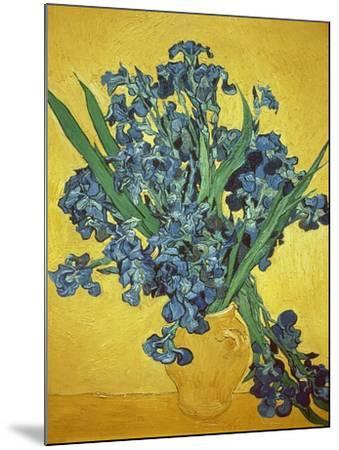 Iris-Vincent van Gogh-Mounted Giclee Print