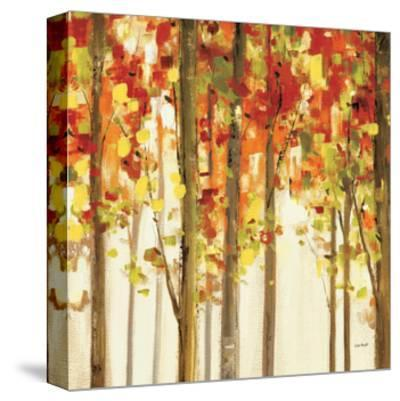 Autumn Forest Study II-Lisa Audit-Stretched Canvas Print