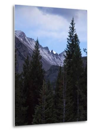 View of Moutains Near Bear Lake in Rocky Mountain National Park-Anna Miller-Metal Print