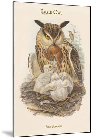 Bubo Maximus - Eagle Owl-John Gould-Mounted Art Print