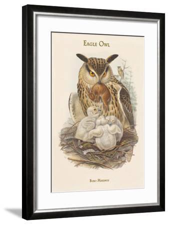 Bubo Maximus - Eagle Owl-John Gould-Framed Art Print