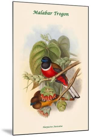Harpactes Fasicatus-John Gould-Mounted Art Print