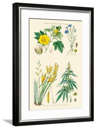Plants Used in Clothing and Cordage. Cotton, Flax, New Zealand Flax, Cannabis-William Rhind-Framed Art Print