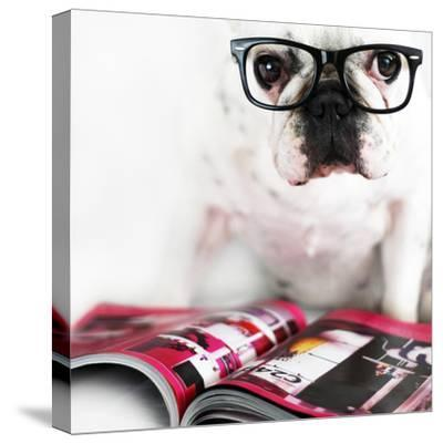 Dog with Glasses-retales botijero-Stretched Canvas Print