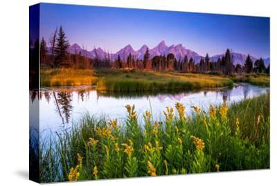 Teton Sunrise-Steve Burns-Stretched Canvas Print