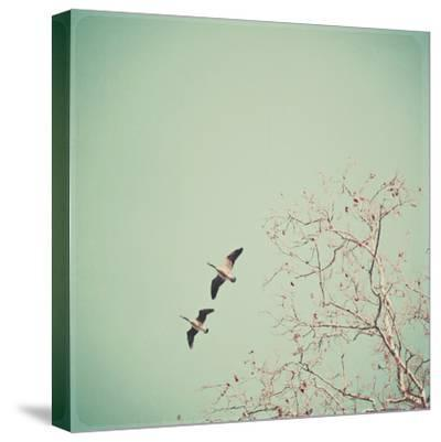 Two Geese Migrating-Laura Ruth-Stretched Canvas Print