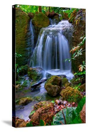 Waterfall-Patti Sullivan Schmidt-Stretched Canvas Print