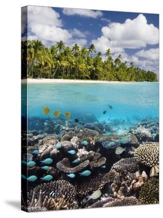 Tropical Paradise - the Maldives-Steve Allen-Stretched Canvas Print