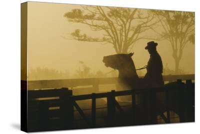 Silhouette of Man Riding Horse at Dusk-Nicolas Russell-Stretched Canvas Print