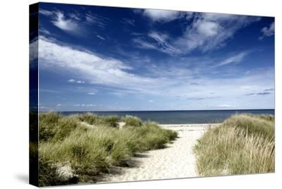 Beach, Welfleet MA-Jeffrey Coolidge-Stretched Canvas Print