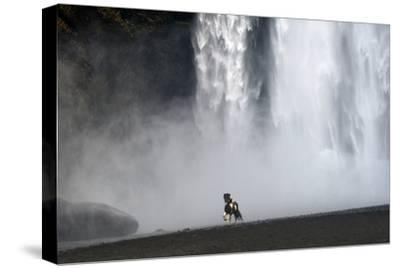 Icelandic Pony at Skogarfoss Waterfall-David Yarrow Photography-Stretched Canvas Print