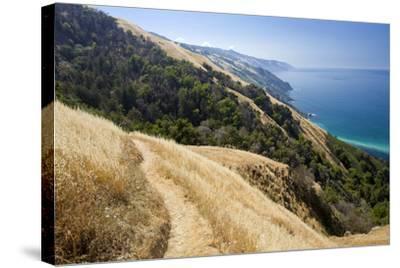 Coastal Trail, along the Pacific Ocean.-Kodiak Greenwood-Stretched Canvas Print