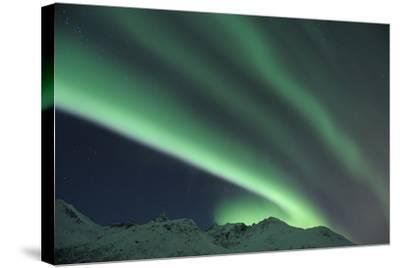 Nothern Lights, Aurora Borealis-Raimund Linke-Stretched Canvas Print