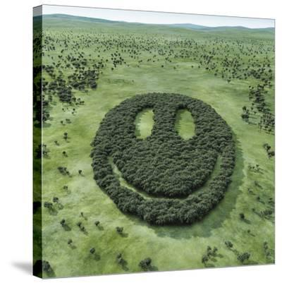 Forest Shaped Smiley-Hiroshi Watanabe-Stretched Canvas Print