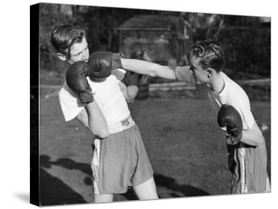 Boxer Twins-Greated-Stretched Canvas Print
