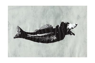 Dog Fish-Katie Edwards-Framed Giclee Print