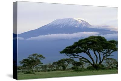 Mt Kilimanjaro in Tanzania--Stretched Canvas Print