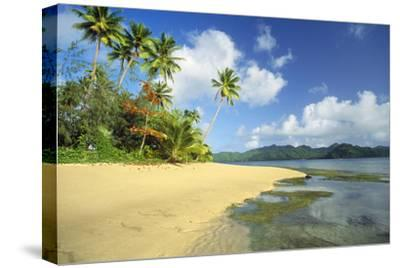 Fiji Beach--Stretched Canvas Print