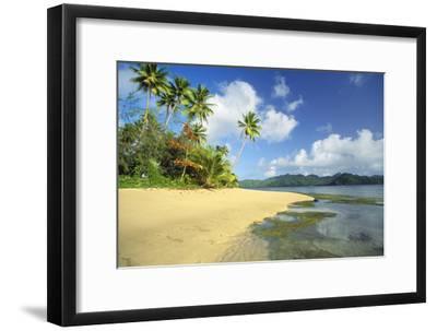 Fiji Beach--Framed Premium Photographic Print