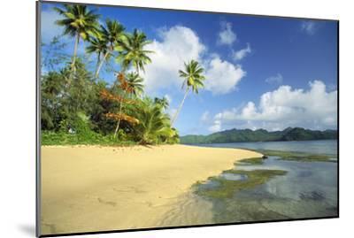 Fiji Beach--Mounted Premium Photographic Print