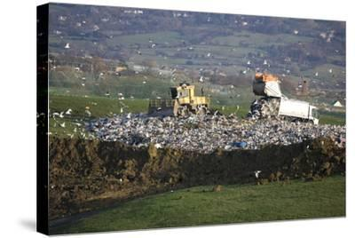 Refuse Truck at Landfill--Stretched Canvas Print