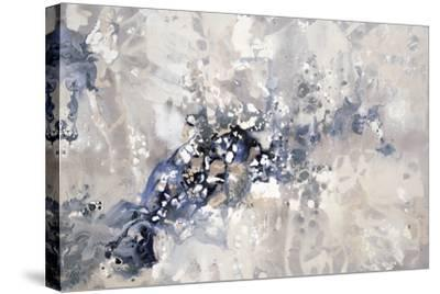Sedimentary Layers-Kari Taylor-Stretched Canvas Print