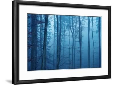Wrapped in Blue-Philippe Sainte-Laudy-Framed Photographic Print