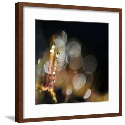 Secret Garden-Ursula Abresch-Framed Photographic Print