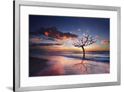 Tree in the Sea-Marco Carmassi-Framed Photographic Print