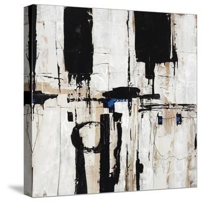Echo I-Joshua Schicker-Stretched Canvas Print