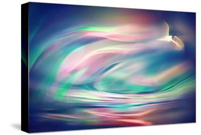 Freedom-Ursula Abresch-Stretched Canvas Print