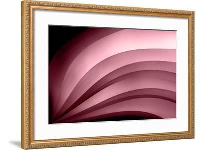 A Fan of Purple - Summer-Ursula Abresch-Framed Photographic Print