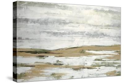 Aurelian IV-Joshua Schicker-Stretched Canvas Print