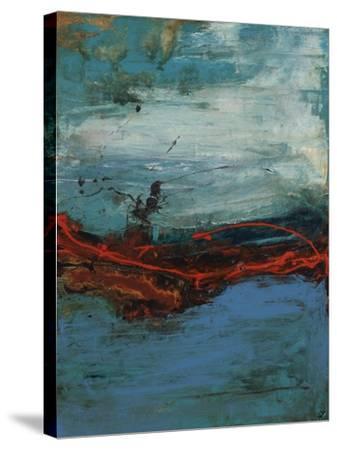 Swift Focus I-Joshua Schicker-Stretched Canvas Print