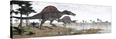 Two Spinosaurus Dinosaurs Walking to the Water in a Desert Landscape--Stretched Canvas Print