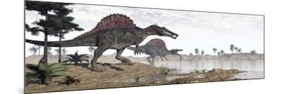 Two Spinosaurus Dinosaurs Walking to the Water in a Desert Landscape--Mounted Art Print