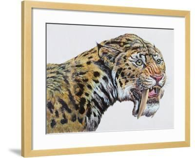 Close-Up Headshot of Megantereon, Pliocene Epoch--Framed Art Print