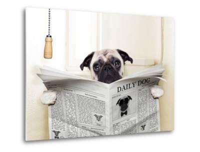 Dog Toilet-Javier Brosch-Metal Print