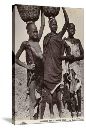 Shulluk Girls, White Nile--Stretched Canvas Print